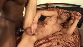 Buff black stud gets head and buries his cock deep inside guys tight ass